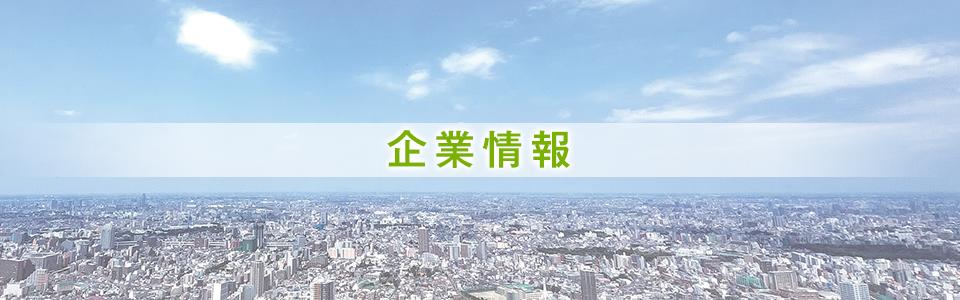 main_img-company